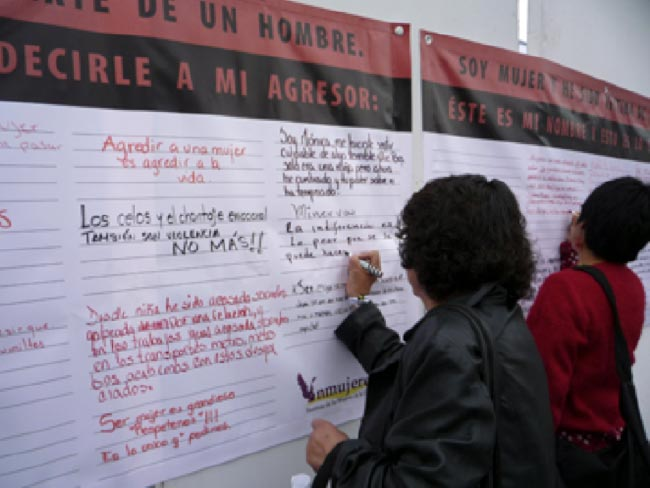 Lorena Wolffer, Muros de réplica, México, 2008.
