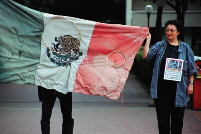 Pinto mi Raya (Víctor Lerma y Mónica Mayer en colaboración con Antonio Juárez, fotógrafo). Nuestras banderas, 2015.